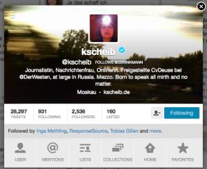 Twitter-Profil-Ansicht am Beispiel von Kathrin Scheib (@kscheib)
