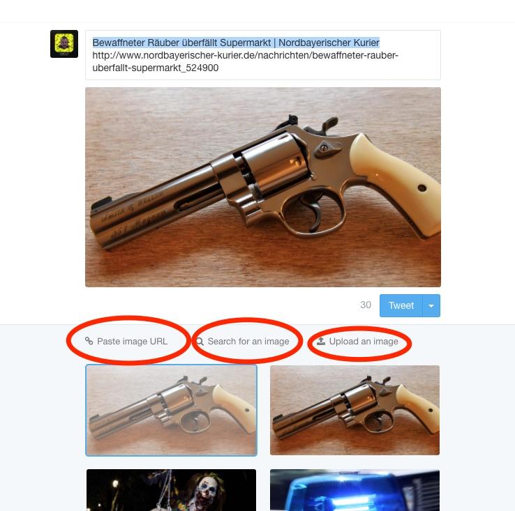 Das Tool sucht die Bilder auf der verlinkten Seite und bietet sie an. Screenshot: Uwe Renners